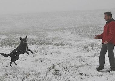 au-snow-2.jpg