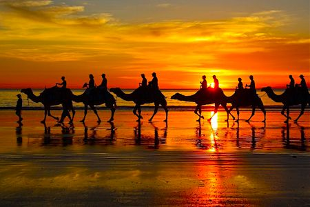 cable-beach-camel.jpg