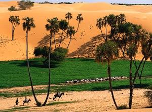 green-sahara.jpg