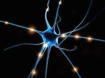 neuron-top.jpg