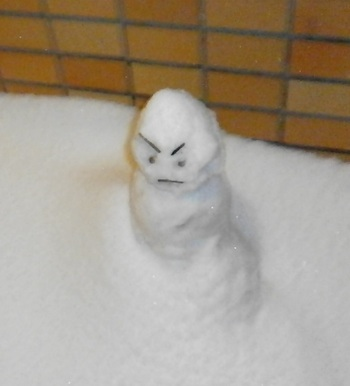 2014-snow.jpg