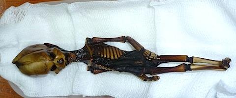 Atacama-skeleton-1.jpg
