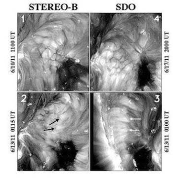 SDO-STEREO-coronal-cells.jpg