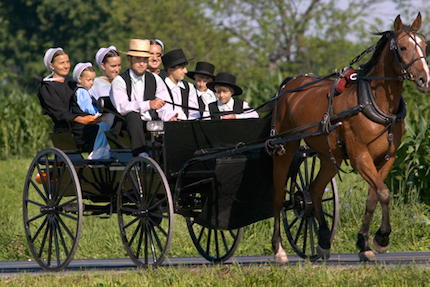 amish-family-in-buggy8.jpg
