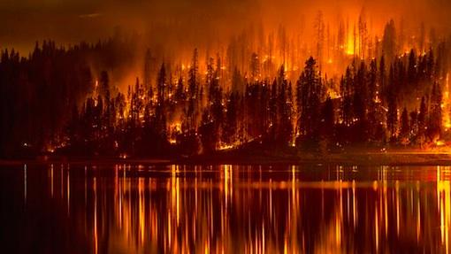 calfornia-orange.jpg