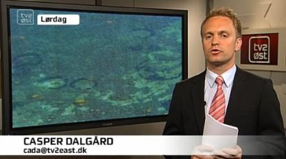denmark-tv.jpg