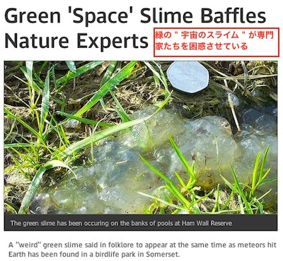 green-bloblike-123.jpg