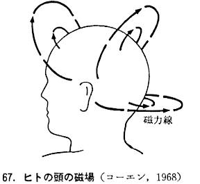 human-magnetic.jpg