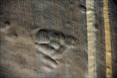 inside-permafrost-1.jpg