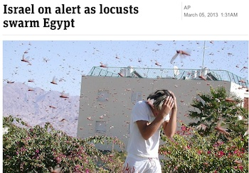 israel-locust-01.jpg