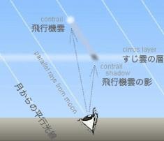 light-01.jpg