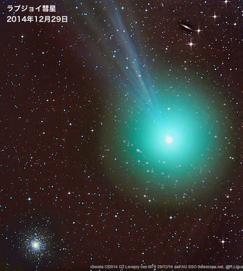 lovejoy-2014-top.jpg