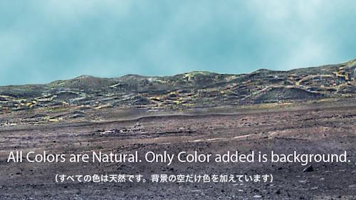 mars-neons-01.jpg