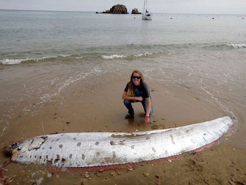 oarfish-catalina-island-june-2015-2.jpg