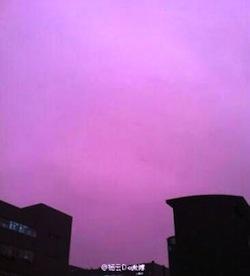 purple-china-01.jpg