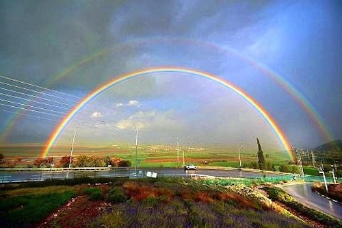 rainbow-0107.JPG