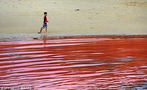 red-rain-2.jpg