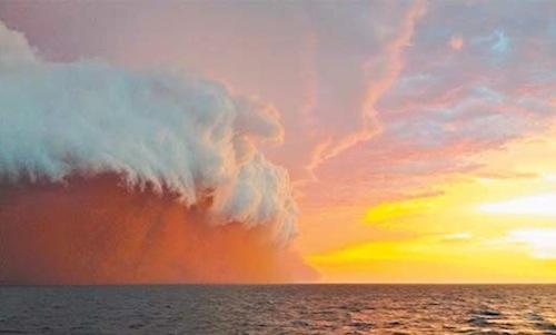 red-wave-02.jpg