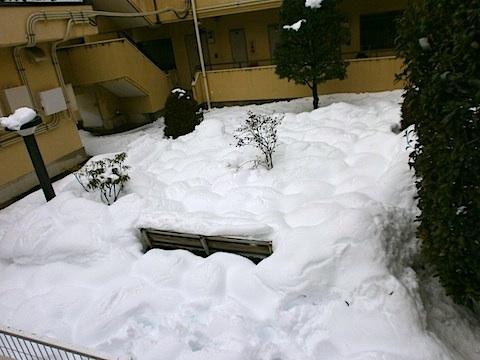 snow-02-15-1.jpg