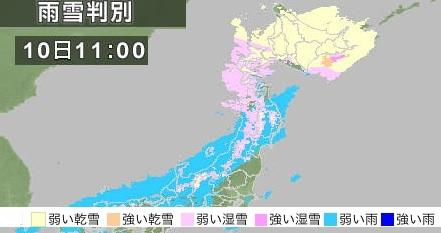 snow-0310.jpg
