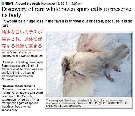 white-raven-02.jpg